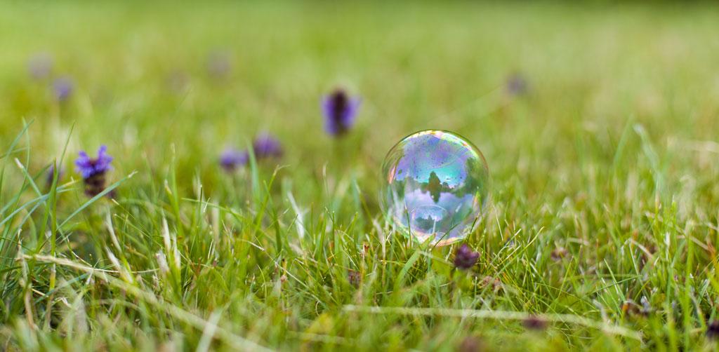 Rheuma Akademie Seifenblase im grünen Gras
