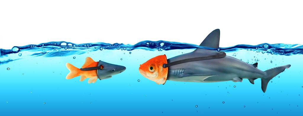 Rheuma Akademie Deception Concept Goldfish